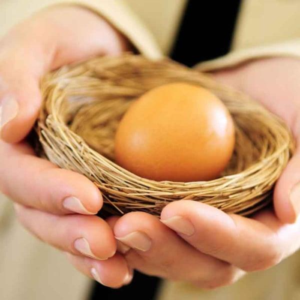 Nest-egg-2