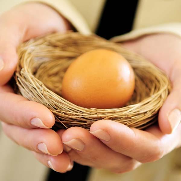 Hands holding a nest egg..jpg