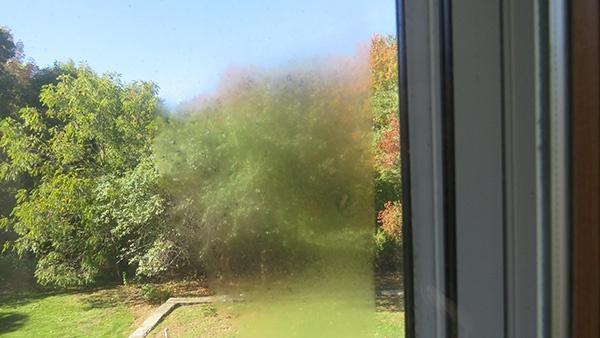 Foggy Windows