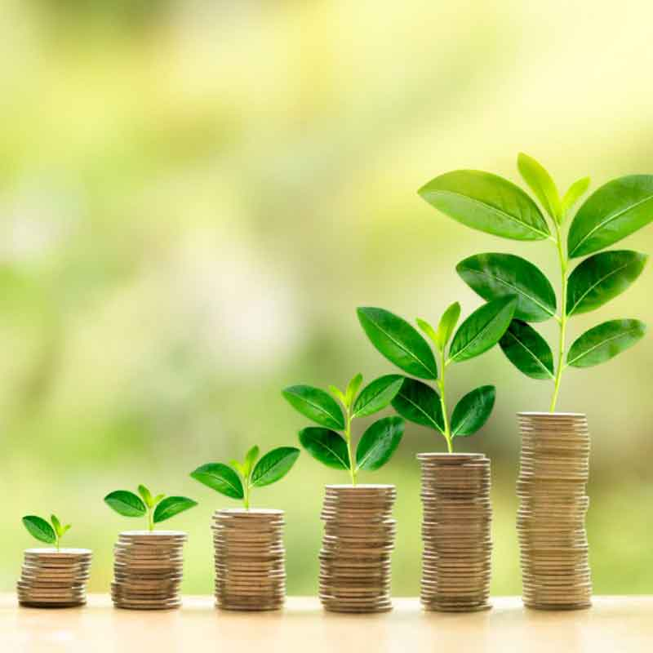 plants_growing_representing_direct_deposit_savings
