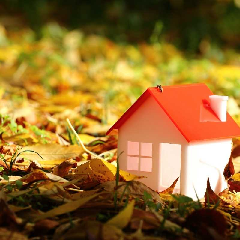 house for sale in autumn