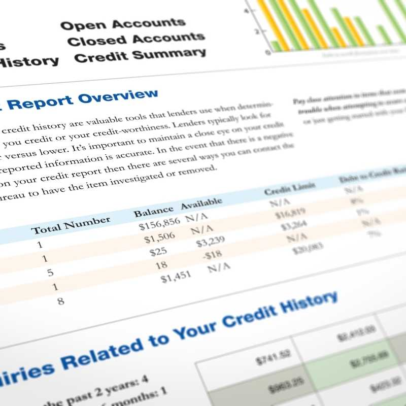 credit report with id theft